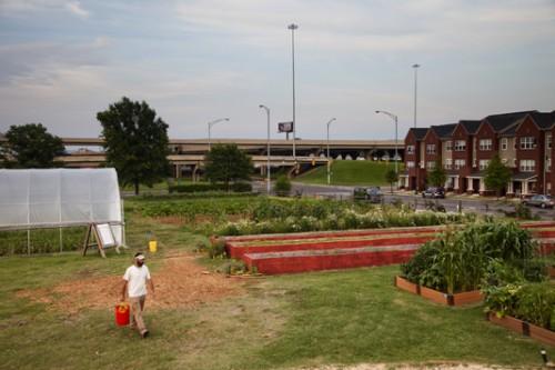 edwin jones valley teaching farm