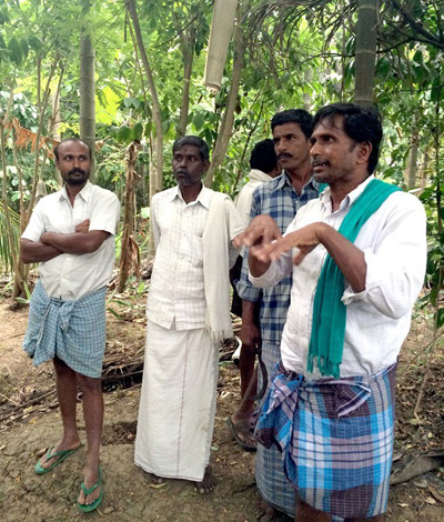 Krishnappa standing on the edge of his food forest sharing his experiential knowledge of Zero Budget Natural Farming with local farmers. Photo credit: WhyHunger