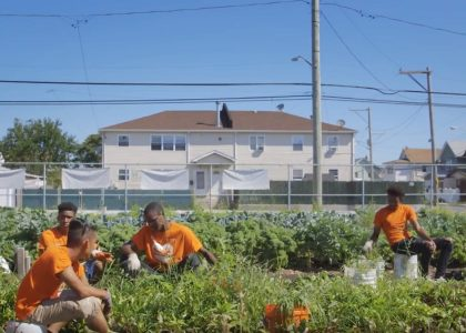 Connecting Hunger and Health in Brooklyn & Beyond