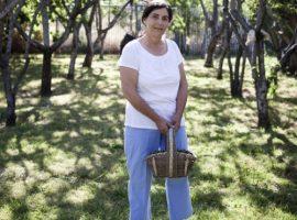 Storytelling Spotlight: Soil Born Farms