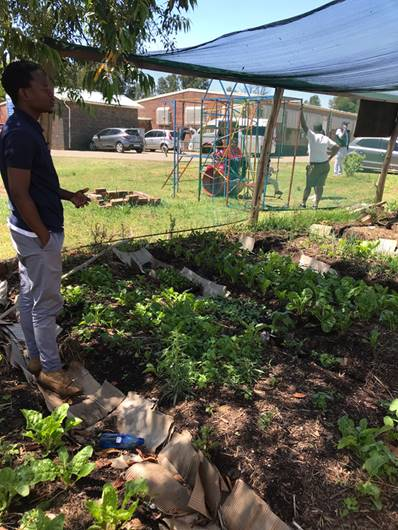 Restoring My Indigeneity: Reflections on South Africa Agroecology Exchange by a Queer Black Urban Farmer, Dean Jackson