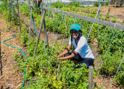 #BHM: A Brief Look At The Importance of Black Food Sovereignty