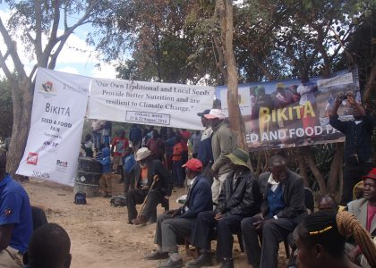 Perspectives: The Fight for Food Sovereignty in Zimbabwe