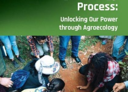 Caribbean and North American Grassroots Organizations Lead the Way Towards Food Sovereignty