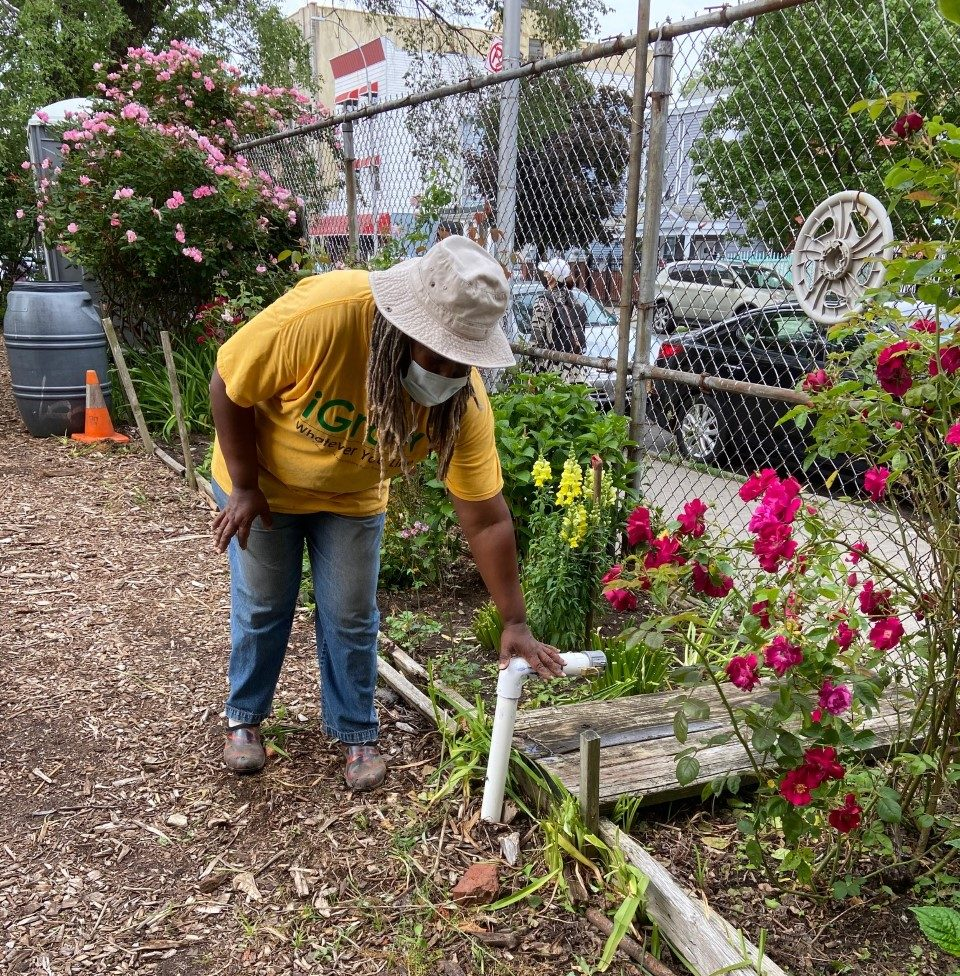 WhyHunger Teams Up With Let It Grow to Install an Irrigation System in Bronx Community Garden