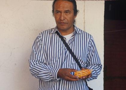 En Defensa del Maíz: Una mirada a la decisión de México de eliminar las importaciones de maíz transgénico